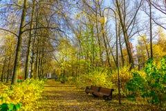 Bench in Autumn Park Stock Photo