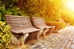 Bench in the autumn park Royalty Free Stock Images