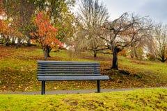 Bench in autumn park under rain Stock Photos