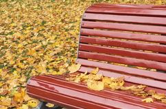 Bench in the autumn park. Wooden red bench with yellow leaves in the park in autumn time royalty free stock photography