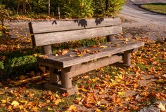 A bench in an autumn park. A wooden bench is strewn with yellow fallen leaves. Stock Photo