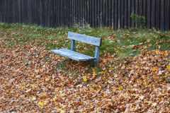 Bench autumn Royalty Free Stock Images