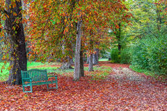 Bench in autumnal park. Stock Photography