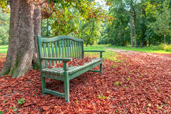 Bench in autumnal park. Wooden bench under tree on the ground covered with red fallen leaves in autumnal park in Piedmont, Italy royalty free stock photo