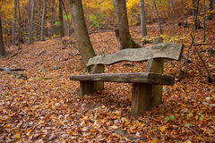 Bench in an autumnal wood Stock Photography