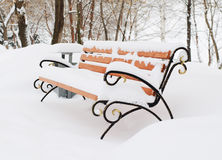 Bench on avenue  winter park Stock Images