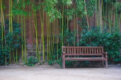Bench with bamboo around Royalty Free Stock Images