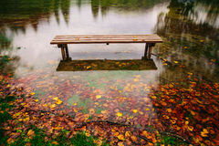Bench on the bank of a lake in Autumn Royalty Free Stock Image