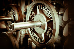 Bench bar and weight plate. At gym Royalty Free Stock Image