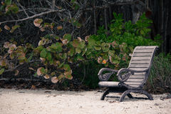 Bench on the beach. A solo bench on the beach royalty free stock photo