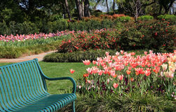 Bench in the beautiful garden. A green bench and beautiful spring garden in Dallas Arboretum, TX USA Royalty Free Stock Photo