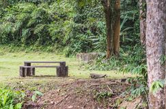 The bench. Royalty Free Stock Photo