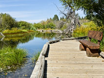 Bench and boardwalk. Rainbow Trail at Taylor Creek, Lake Tahoe, California Stock Image