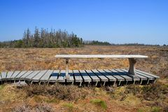 Bench on the bog Stock Photo