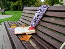 A bench with a book in a quiet park on a September day royalty free stock photography