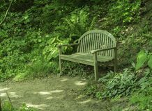 A Bench At The Bottom Of A Hill