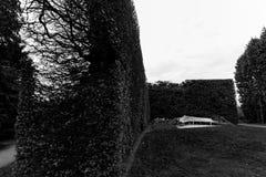 Bench and bush fence, Royal Botanic Garden, Edinburgh, Scotland- Stock Image