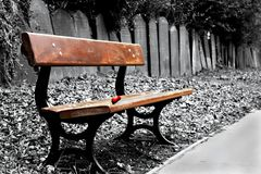 Bench in cemetery. Red rose on a bench in a cemetery Royalty Free Stock Images