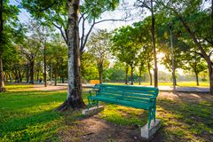 Bench in the central green park Royalty Free Stock Photos