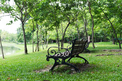 Bench in central park. Old Bench in central park background Stock Image