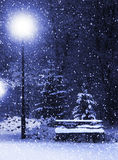 Bench, christmastree and lantern royalty free stock photography
