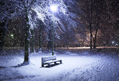 Bench, christmastree and lantern Royalty Free Stock Image