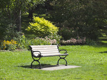 Bench in a city park. City of Toronto. Canada. Focus on the bench Stock Images
