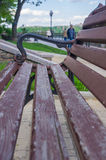 Bench in a city Park. In the spring season, closeup royalty free stock image