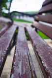 Bench in a city Park. In the spring season, closeup royalty free stock images