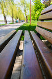 Bench in a city Park. In the spring season, closeup stock image