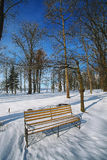 Bench in city park at winter Stock Image