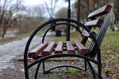 Bench in the city in spring Royalty Free Stock Image