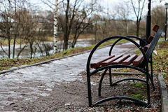 Bench in the city in spring Stock Images