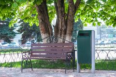 bench with city trash can in urban park under the flowering chestnut on sunny day stock photo