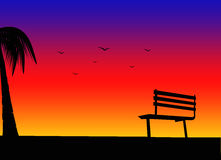 Bench. And coconut tree silhouette on sunset background Royalty Free Stock Image