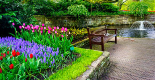 Bench in the colorful spring garden, Keukenhof. Netherlands. Royalty Free Stock Photos