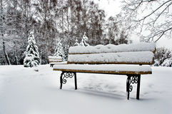 Bench covered with snow Royalty Free Stock Photography