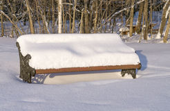 Bench covered with snow Stock Photography