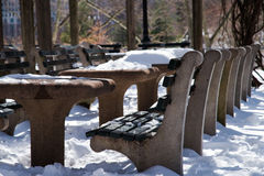 Bench covered with snow in Central Park in New York City. Royalty Free Stock Photos