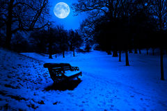 Bench covered in snow at midnight Royalty Free Stock Photography
