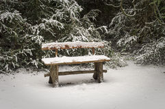 Bench covered with snow in the park Stock Image