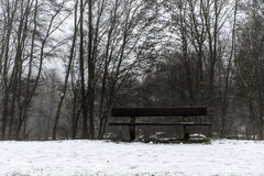 Bench empty seat in wood trees winter and fog Royalty Free Stock Image