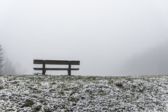 Bench empty seat in wood trees winter and fog 9 Royalty Free Stock Photo