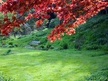 Bench en jardín fotos de archivo