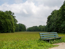 Bench en un campo en un claro grande del bosque Imagen de archivo