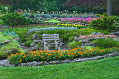 Bench en un jardín del verano con las flores florecientes Foto de archivo