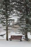 Bench en un parque Fotografía de archivo
