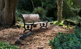 Bench en un punto ocultado en los jardines botánicos de Auckland, Nueva Zelanda imagen de archivo
