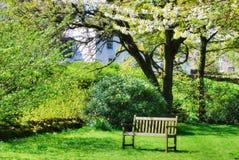 Bench in an English contry garden. A wooden bench in an English contry garden surrounded by trees. Springtime Royalty Free Stock Photo