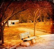 Bench in the fall Royalty Free Stock Photo